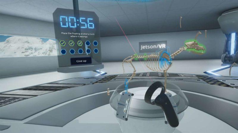 Jeston VR realité virtuelle anatomie chien
