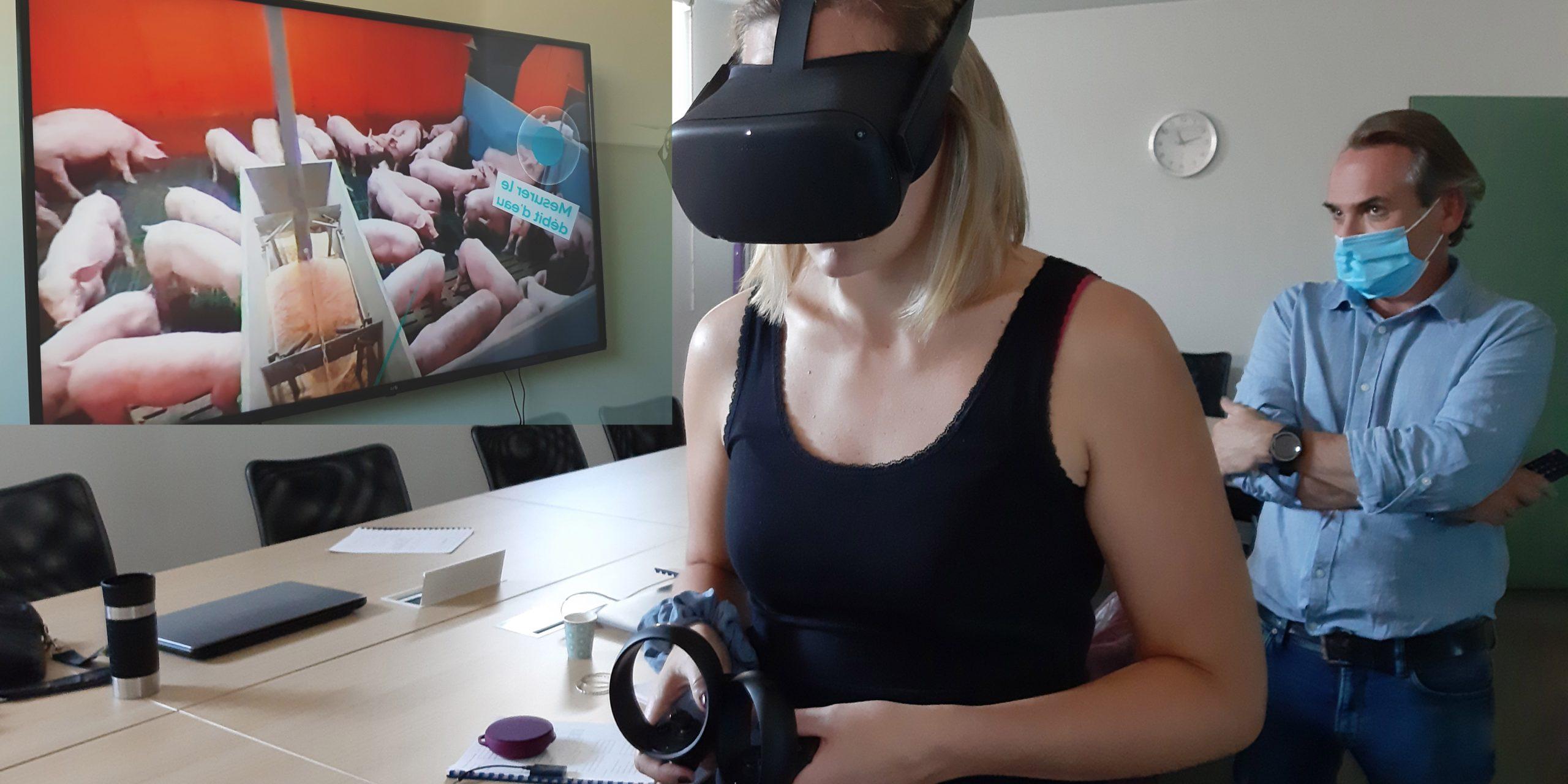La réalité virtuelle au service des visites d'élevage